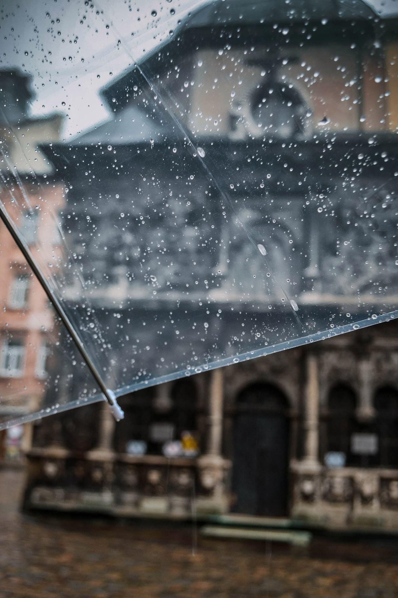 Дощ у Львові © Наталя Павлова