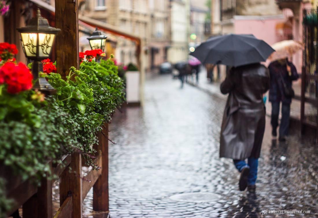 Дощ © Andriy Ignatov
