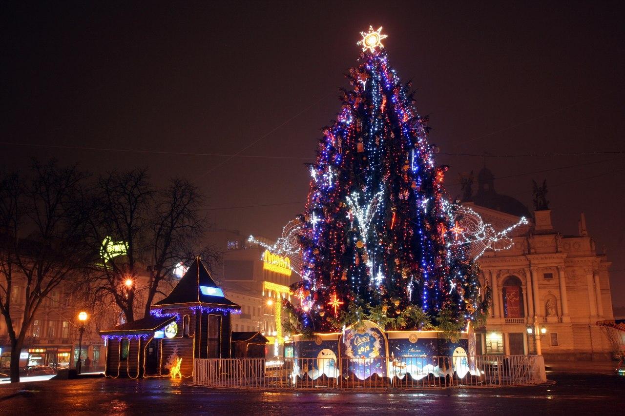 Головна ялинка Львова © portal.lviv.ua