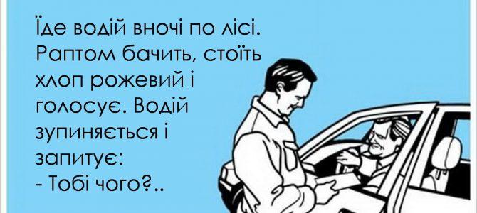 Анекдот: Їде водій вночі по лісі…