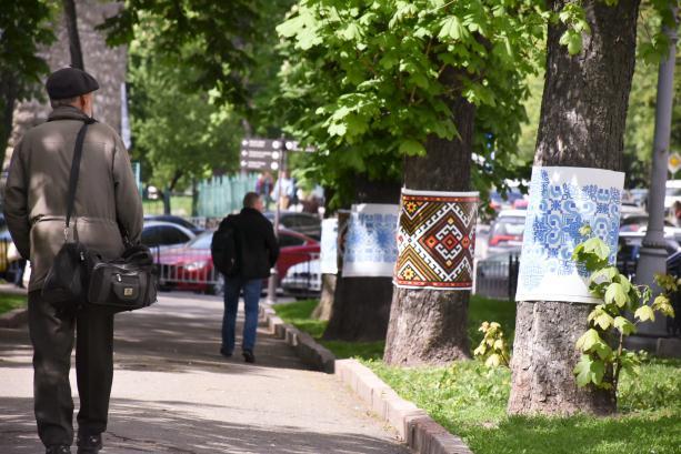 У Львові дерева вдягли у вишиванки