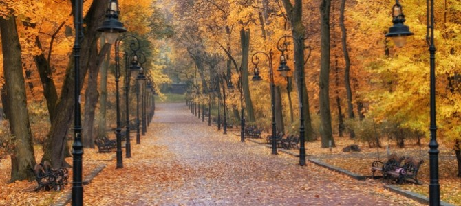 15 цікавих фактів про парки Львова