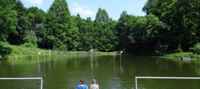 Озеро на Погулянці не лише очистять, а й облагородять територію довкола водойми