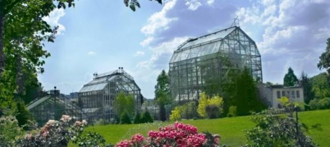 Львів'ян кличуть на осінню прогулянку Ботанічним садом