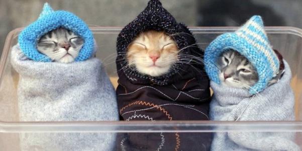 В Україну йде похолодання: синоптик попередила про різку зміну погоди