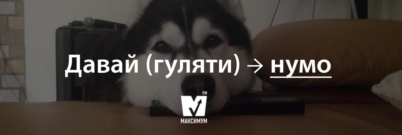 Говори красиво: 20 типових помилок, які ми найчастіше допускаємо в українській мові - фото 200374