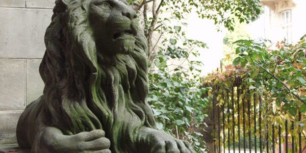 Містичні Історії Старого Львова: Легенда про лева