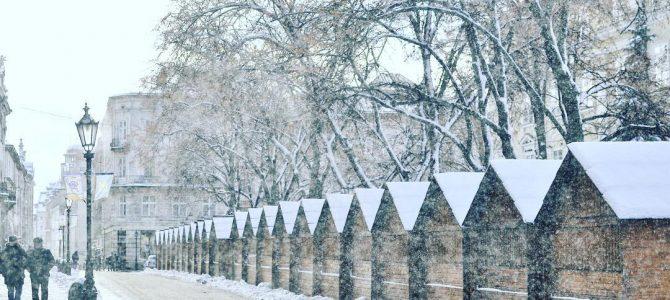 Львів засипає снігом – найкращі фото з соцмереж