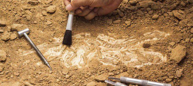 Фотофакт: у Львові розкопали мури старовинного замку