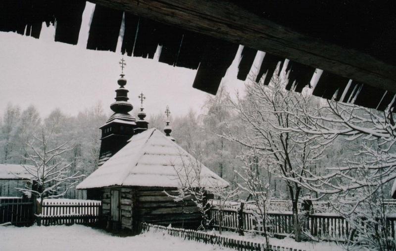 Шевченківський гай взимку