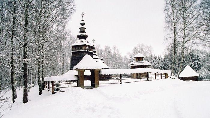 Шевченківський гай взимку (vovsad.blogspot.com)