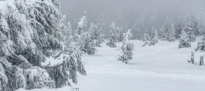У Карпатах випало майже півтора метра снігу (фото)
