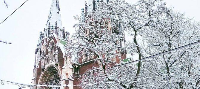 Атмосфера зимового Львова на 20 фотографіях