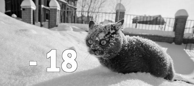 Мороз до -18. Як зміниться погода у Львові у найближчі дні