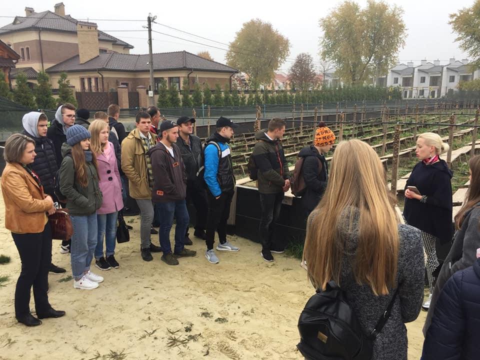 Як біля Львова вирощують равликів: «жнива» на равликових полях