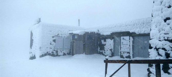 На горі Піп Іван у Карпатах випало до метра снігу (фото)