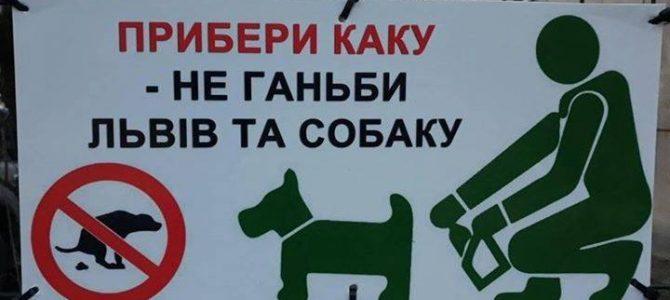 «Прибери каку – не ганьби Львів і собаку», – небайдужі львів'яни самотужки намагаються зробити Львів чистішим
