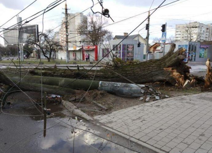 Що накоїв вітер у Львові (фото)