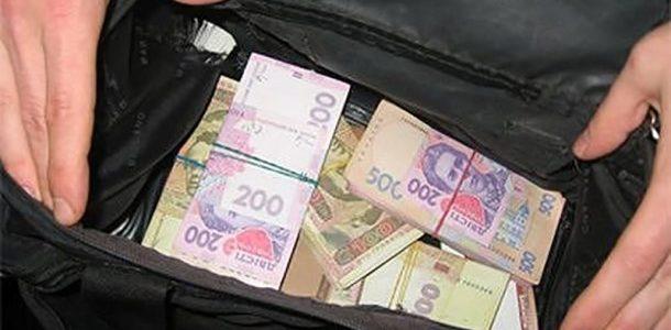 Школярка з Трускавця знайшла чималу суму грошей і повернула їх власнику