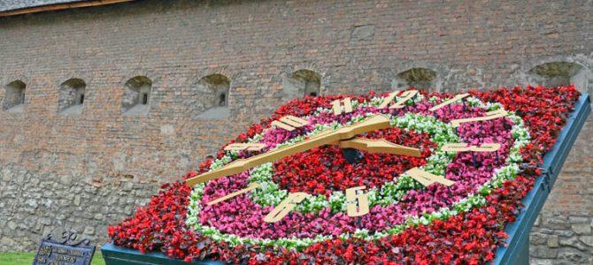 Біля площі Митної у Львові заквітчали годинник ( фото)