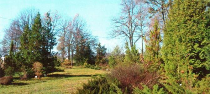 На Львівщині облаштують два дендрологічних парки