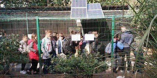 Із Львівського міського еколого-натуралістичного центру поцупили тварин
