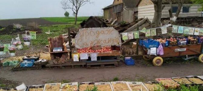 """На Львівщині з'явився """"ринок"""" із самообслуговуванням при дорозі"""