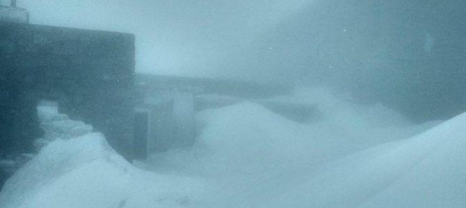 У Карпатах випав травневий сніг