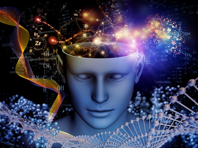 Мозок. Таємниці свідомості  The Brain. A Secret History (2010)