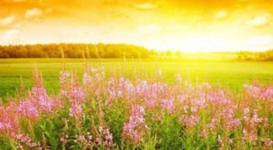 Сьогодні день літнього сонцестояння: історія, традиції і прикмети