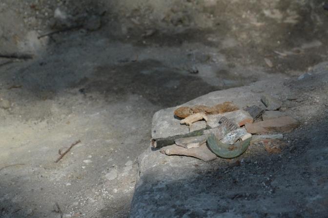 Фото: Рятівна археологічна служба