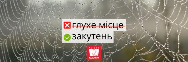 10 українських слів, які дуже влучно описують карантин